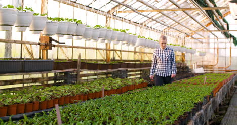 Agriculture-Female-Gardener-Working-In-Greenhouse-1