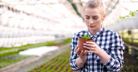 Young-Female-Botanist-Examining-Potted-Plant-12