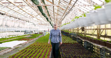 Agriculture-Female-Gardener-Working-In-Greenhouse-3