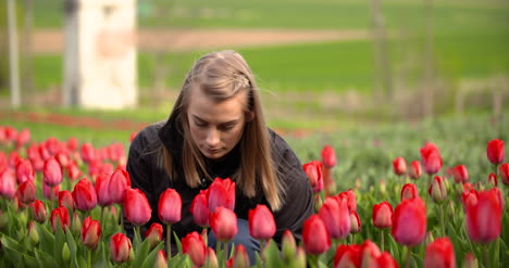 Female-Researcher-Walking-While-Examining-Tulips-At-Field-12