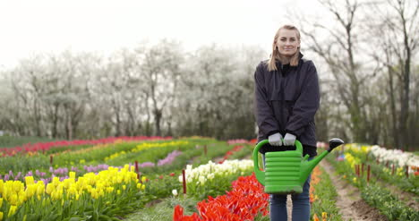 Agriculture-Farmer-Watering-Tulips-At-Tulip-Flower-Plantation-1