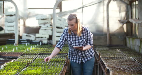 Female-Gardener-Usingcalculator-In-Greenhouse-Agriculture-Business-Agribusiness-1