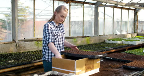 Young-Female-Botanist-Examining-Potted-Plant-8