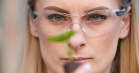 Close-Up-Of-Scientist-Or-Researcher-Looking-At-Young-Plant-And-Examining-Plant-6