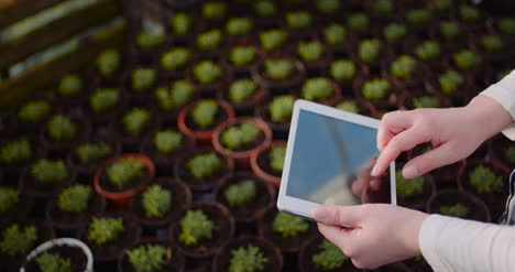 Female-Botanist-Using-Digital-Tablet-While-Examining-Plants-At-Grenhouse-1