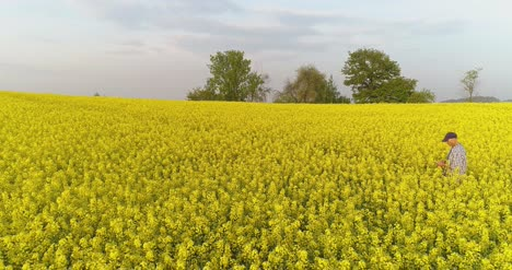 Farmer-Using-Digital-Tablet-On-Rapeseed-Field-2