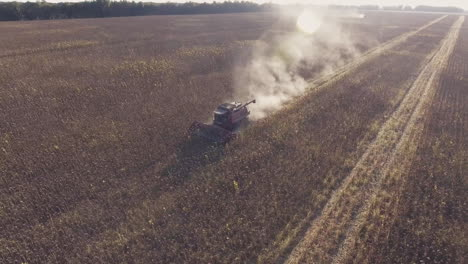 Harvesting-Sunflower-The-Camera-Flies-Around-The-Combine-Aerial-Video