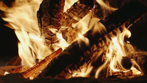 Bonfire-Of-The-Good-Wood-Burning-On-The-Beach-Close-Up