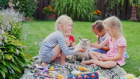 Children-Play-With-A-Cat-In-The-Yard