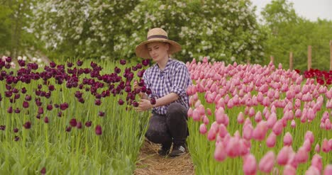 Female-Researcher-Walking-While-Examining-Tulips-At-Field-2