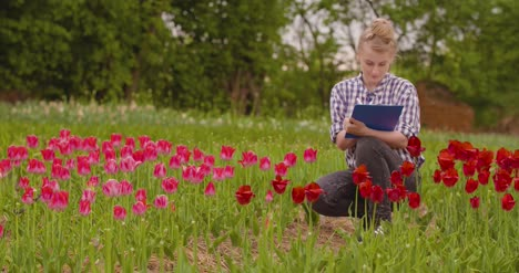 Female-Researcher-Walking-While-Examining-Tulips-At-Field-5