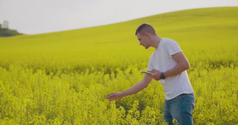 Researcher-With-Digital-Tablet-Examining-Rape-Blossom-On-Field-1