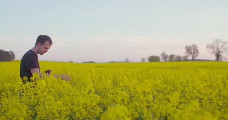Medium-Shot-Of-Agriculture-Farmer-Working-At-Oilseed