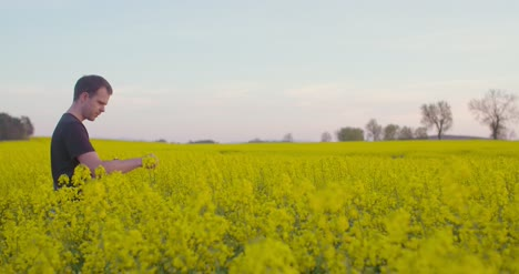 Medium-Shot-Of-Agriculture-Farmer-Working-At-Oilseed-1