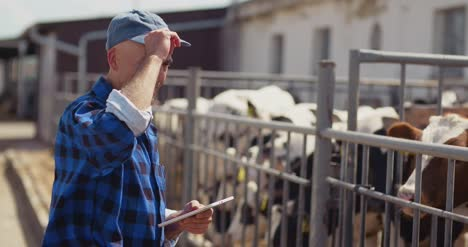 Farmer-Using-Digital-Tablet-While-Looking-At-Cows-6