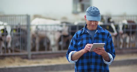 Farmer-Using-Digital-Tablet-While-Looking-At-Cows-2