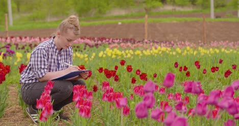 Female-Researcher-Walking-While-Examining-Tulips-At-Field-14