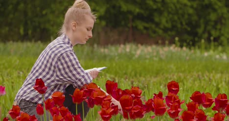 Female-Researcher-Walking-While-Examining-Tulips-At-Field-15