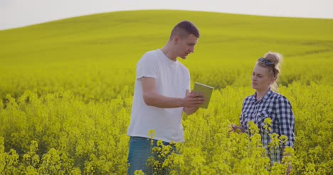Farmers-Discussing-While-Using-Tablet-Computer-At-Farm-10
