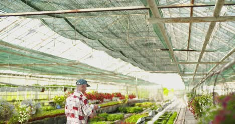 Researcher-Examining-Potted-Plant-At-Greenhouse-4