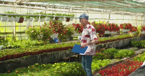 Researcher-Examining-Potted-Plant-At-Greenhouse-5