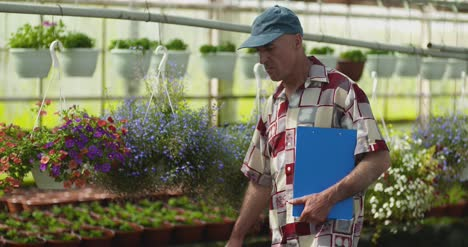 Researcher-Examining-Potted-Plant-At-Greenhouse-7