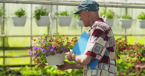 Researcher-Examining-Potted-Plant-At-Greenhouse-8
