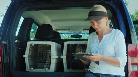 A-Woman-Uses-A-Tablet-Stands-At-The-Trunk-Of-A-Car-Where-There-Are-Cells-With-Puppies-Sale-And-Deliv