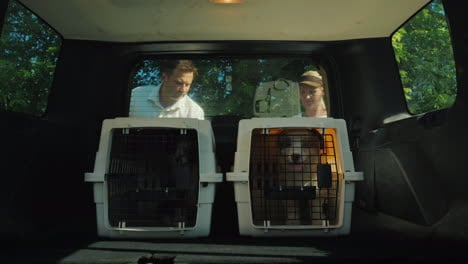 A-Woman-Loads-The-Cage-With-Puppies-In-The-Trunk-Of-A-Car-Get-A-Dog-From-A-Shelter-Concept