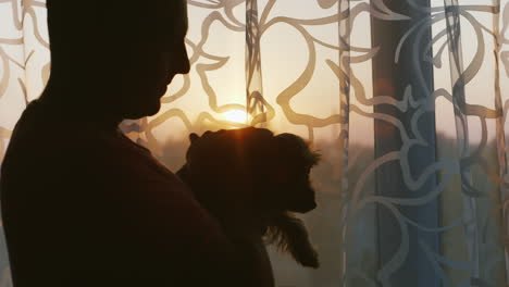 Man-Stroking-Beloved-Dog---Yorkshire-Terrier-Should-The-House-By-The-Window-At-Sunset