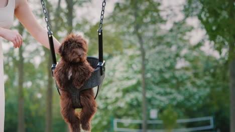 Woman-Rolls-Her-Puppy-On-A-Swing-In-The-Park