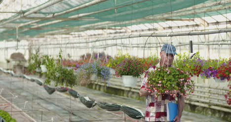 Researcher-Examining-Potted-Plant-At-Greenhouse-17