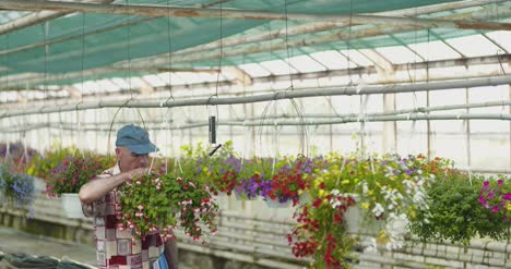 Researcher-Examining-Potted-Plant-At-Greenhouse-18