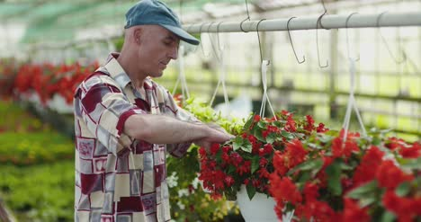 Researcher-Examining-Potted-Plant-At-Greenhouse-20