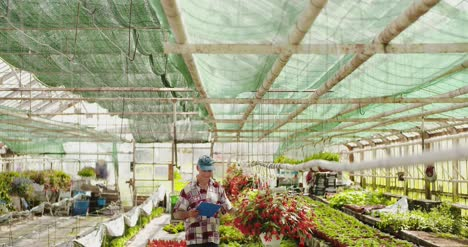 Researcher-Examining-Potted-Plant-At-Greenhouse-25