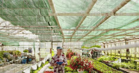 Researcher-Examining-Potted-Plant-At-Greenhouse-26