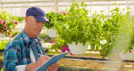 Gardener-Writing-In-Clipboard-While-Supervising-Plants-In-Greenhouse-3
