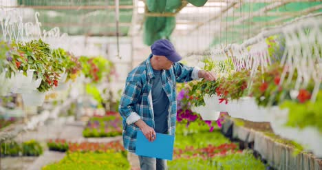 Gardener-Writing-In-Clipboard-While-Supervising-Plants-In-Greenhouse-7