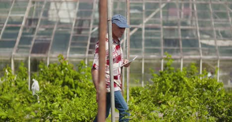 Confident-Male-Farm-Researcher-Examining-And-Tasting-Blueberry-On-Field-5