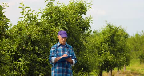 Male-Researcher-Looking-At-Trees-While-Writing-On-Clipboard-2