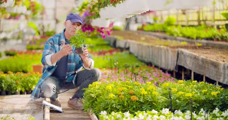 Researcher-Examining-Potted-Plant-At-Greenhouse-29