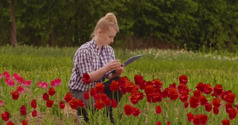 Female-Researcher-Walking-While-Examining-Tulips-At-Field-18