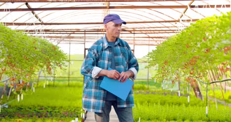 Agriculture-Confident-Male-Gardener-Examining-Potted-Flower-Plant-13
