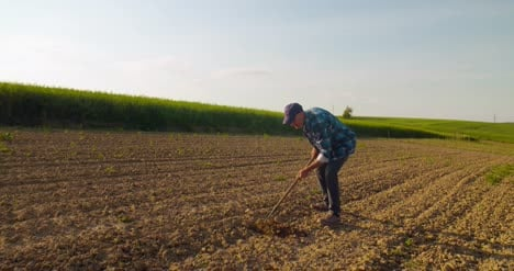 Agricultural-Tool-Is-Hoeing-Field