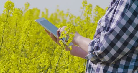 Farmer-Touching-Screen-Of-Digital-Tablet-At-Rapeseed-Field-8