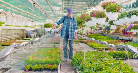 Pesticide-Sprayed-On-Flowering-Plants-At-Greenhouse-5