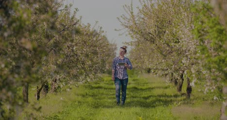 Agronomist-Or-Farmer-Examining-Blossom-Branch-In-Orchard-14