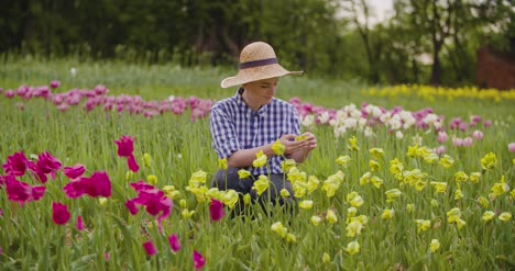Female-Researcher-Walking-While-Examining-Tulips-At-Field-33