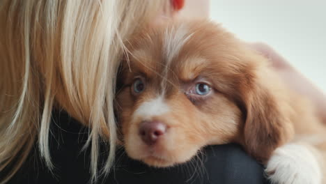 Blonde-Woman-Hugs-A-Cute-Blue-Eyed-Puppy-Favorite-Pet