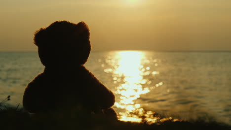 Teddy-Bear-Silhouette-Looks-At-The-Sunrise-Over-The-Sea